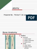 Elbow Anatomy1