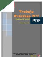 Trabajo Práctico Nº1.docx Pirómetro