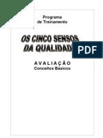 manual síntese operacional 5S AVALIAÇÃO