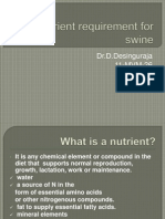 Nutrient Requirement for Swine
