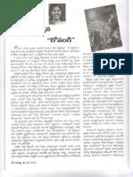 Essay on Gosangi book