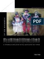 05andamios Plurinacionalidad FP