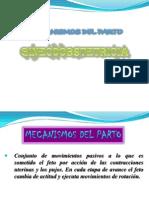 Clases Gine 7 Mecanismos y Asistencia Del Parto.