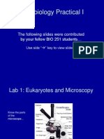 Microbiology Practical 1