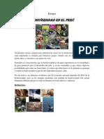 Endayo de Biodiversodad Del Peru