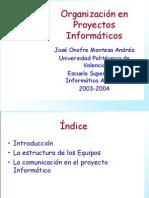 organizacion proyecto informatico