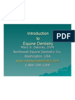 Intro to Equine Dentistry