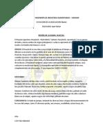 RESEÑA DE LA DANZA HUAYLAS