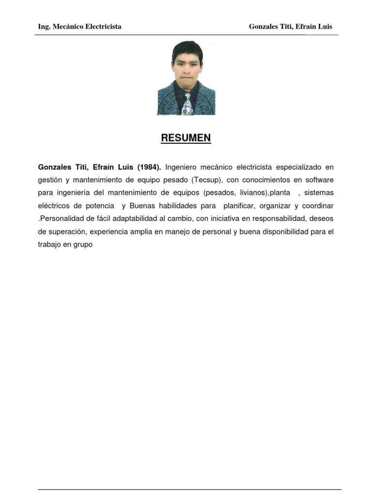 Cv Efrain Luis Gonzales Titi 2012