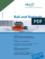 KaliStein3_08.pdf