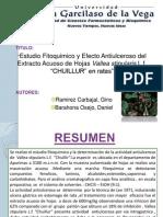 """Estudio Fitoquimico y Efecto Antiulceroso del Extracto Acuoso de Hojas Vallea stipularis L.f. """"CHUILLUR"""" en ratas"""
