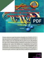 Control Genetico de La Sintesis Proteica
