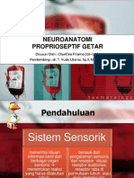Neuroanatomi Proprioseptif Getar (Chynthia Friama 05-014)