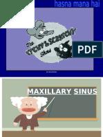 Maxi Sinus