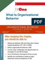1. Organizational Behavior - An Introduction