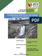 Eutrofización en el Río Rímac [artículo]