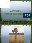 ÁRVORES DO REINO ANIMAL