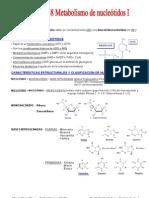 T. 47-48 Metabolismo de Nucleótidos I