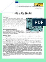 Kale 0505