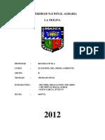 Trabajo Final Medio Ambiente 2012-I