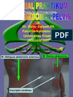 Tutorial Praktikum Model Abdomen-pelvis+Sistem Genito Urinarius Lengkap Revisi 4 Januari 2007
