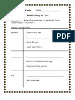 3rd Grade | Animal Classification Worksheet