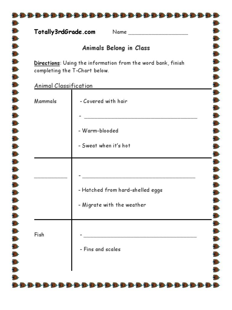 3rd grade animal classification worksheet. Black Bedroom Furniture Sets. Home Design Ideas