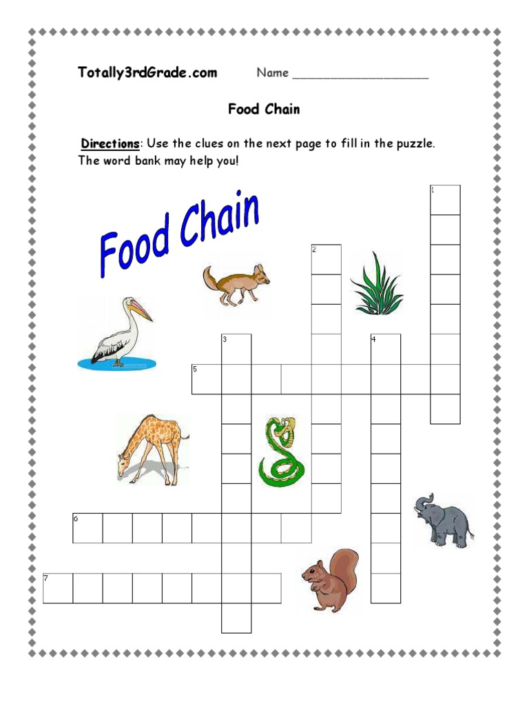 Food Chains and Food Webs Worksheets – careless.me