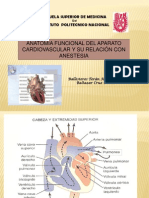 anestesiologia sistema cardiovascular
