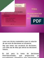 exposición- prog. dinam. deterministica