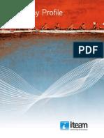 Iteam Company Profile