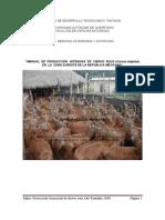Manual Producción de Ciervo Rojo.