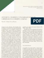 Geoglifos, senderos y etnoarqueología de carvanas en el Desierto Chileno (Clarkson y Briones )