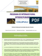Informe PIRI Collipulli 2012