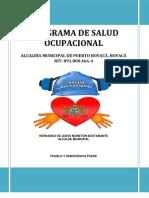 Programa de Salud Ocupacional Boyaca