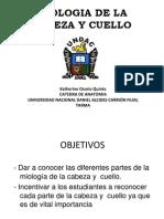 Copia de Miologia de La Cabeza y Cuello01