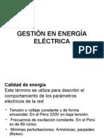GestiÓn en EnergÍa ElÉctrica