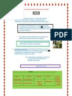 Desarrollar La Prueba en Microsoft Word 2010