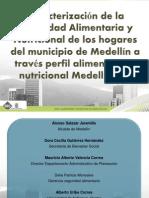 Caracterización de la Seguridad Alimentaria y Nutricional de los hogares del municipio de Medellín a través perfil alimentario y nutricional Medellín