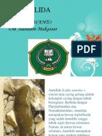 Filum Annelida