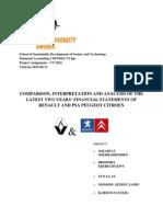 PSA Peugeot Citroen and Renault Financial Analysis Group 9