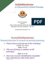 Alzheimer Disease Drugs Against AChE