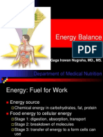 Metabolism and Energy Balance