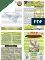 """Boletín Semanal """"El Conquistador"""" Enero 11, 2009"""