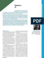 Industria Esambladora Revista industrializar argentina