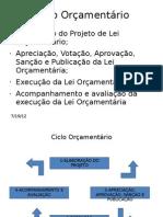 Ciclo Orçamentário_21fev_impressao