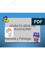 Expo, Dra Aparato Masculino