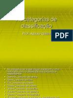 As categorias de classificação