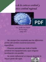 Cap. 7 Funciones de la corteza cerebral y diagnóstico cerebral