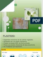 Plastidio